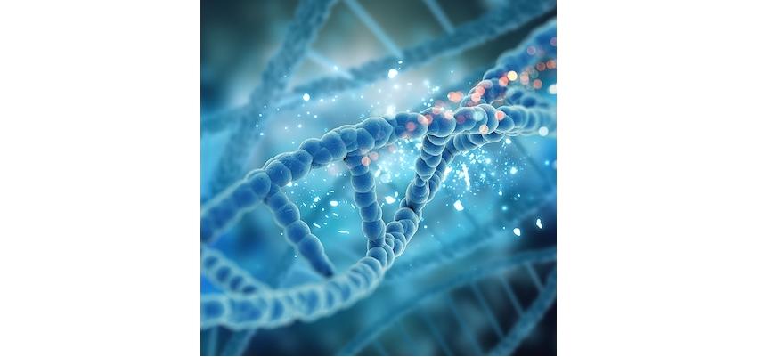 Anne Kanından Fetal Hücre (DNA) Tespiti Nedir?